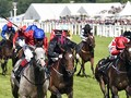 Diamond Field Eyes Redemption at Royal Ascot
