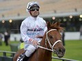 Kiwi Jockey Michael Walker Forced to Dress Down at Flemingto...