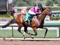 Review: West Coast Steps Into Arrogate's Footsteps During Tr...