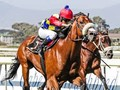 South African Racing Glitters Again