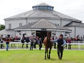 Showcasing colt Topples Record At Tattersalls Ireland Septem...