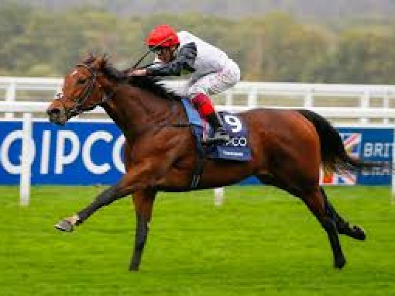 Cracksman May Side Step Arc, To Contest Champion Stakes