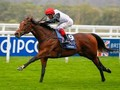 Preview: British Champions Day 2018 (Where, When, Guide, Hor...